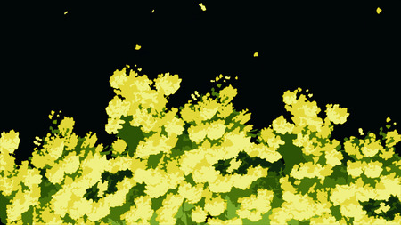 Closeup view of abstract, beautiful, blooming, yellow acacia tree, isolaed on black background. Animation of bright, cartoon, yellow flowers and green leaves swaying in the wind. Фото со стока