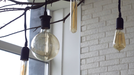 Close up for led light bulbs of different forms hanging on black wires from the ceiling in the room with white brick walls. Media. Beautiful retro light bulbs on tree branch, home decoration elements.