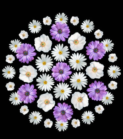 Abstract summer flowers bouquet on white background. Print. Chamomiles, cosmos flowers and violets
