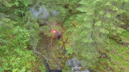 Man standing near the deep ravine with red signal flare in his hand in forest near the high old trees and shrubs. SOS signals in forest