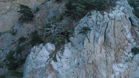 Steep cliff with ledges. Shot. Top view of rocky steep wall with sparse vegetation on ledges. Erosion creates loose unstable surface of rocky massif 版權商用圖片