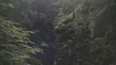 Aerial of a man standing in the gorge between two mountains covered by green plants and trees, extreme situation. Man lighting the signal flare.