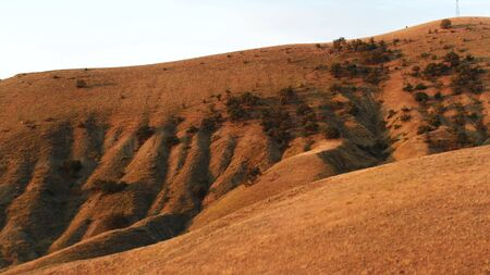 Aerial of mountain slope covered by grass ans rare trees on blue sky background. Beautiful hills under the sunset light, beauty of nature.