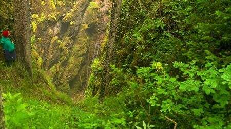 Top view of a hiker man looking down to the dangerous trail inside the deep gorge. Stock footage. Natural background of green forest and the ravine.