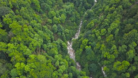 Mountain river running through boulders and green forest. Clip. Top view of green forest valley with mountain stream flowing through rocky rocks