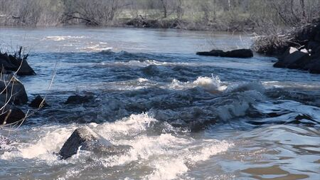 Fast flowing muddy river in spring. Clip. Strong flow of muddy mountain river during spring floods. Mountain river with rocks and views of bare spring trees. 版權商用圖片