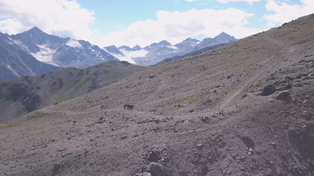 Top view of group of tourists vacationing on mountain route. Clip. Mountaineers line up along mountain rocky path on background of snowy mountains. Breathtaking mountain route Stock fotó