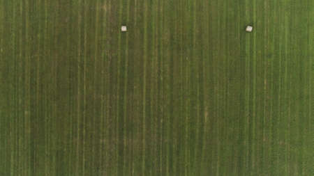 Aerial view of a countryside landscape with fresh green field and dry hay bales during harvest. Shot. Top view of trails lines on farmlands, agriculture concept.