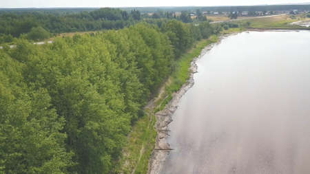 Flying above river bank with scattered wooden logs. Clip. Aerial view of a wide river shore with lush row of growing green trees on cloudy sky background. 免版税图像