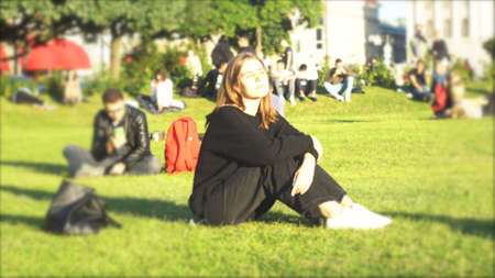 A young woman sitting on green lawn in the park on a background of sunset and sunlight. Media. Attractive girl in black clothes taking a smartphone and looking at it. Archivio Fotografico