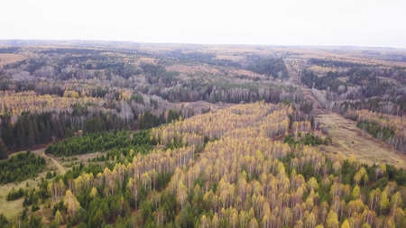 Top view of beautiful autumn forests with green and yellow trees on cloudy day. Clip. Beautiful landscapes of autumn forests with colorful palette of foliage. Vivid panorama of colorful trees in fall Stock fotó