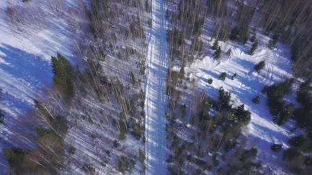 Aerial view of mixed forest and a white road. Clip. Winter nobody nature landscape with birch and pine trees at mount hills, snowy valley on a frosty day.