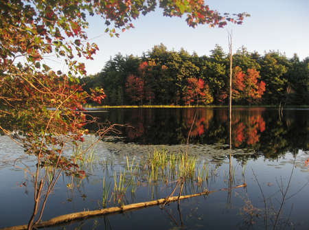 A New England pond in Fall. photo