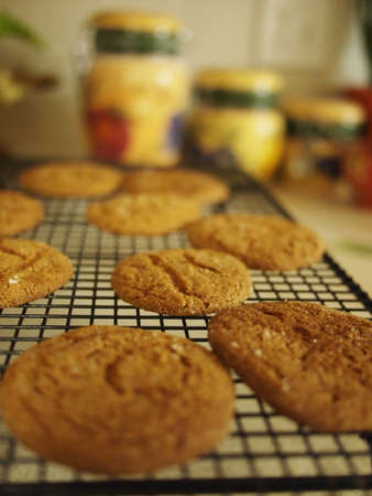 sweet sugar snap: Fresh baked cookies on a cooling rack.