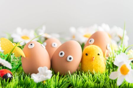 Happy Easter eggs among the spring grass with flowers on an isolated gray background, Easter egg hunt, frame, egg characters with funny faces, Happy Easter concept, kitchen in the background, Easter