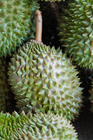 prick: Heap of the durian - Soft focus Stock Photo