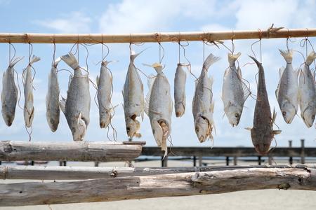 Fische hängen am Zweig zum Trocknen - Fischerlebensstil - weicher Fokus