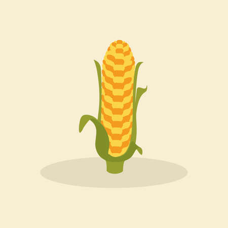cob: abstract cute cob on a special background Illustration