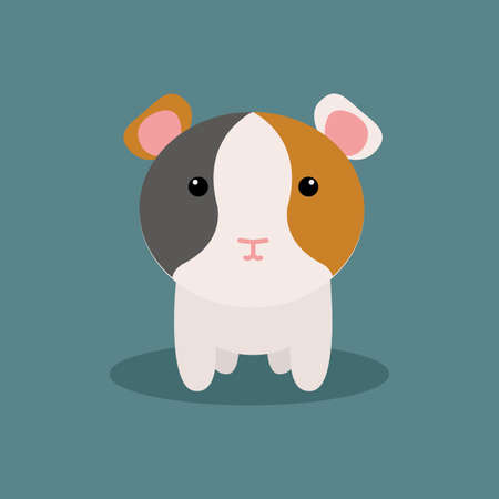 cute hamster: Abstract cute Hamster on a special background