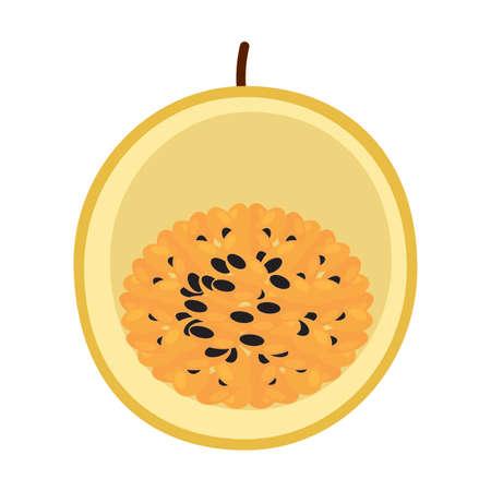 isolated cut pasion fruit Illustration