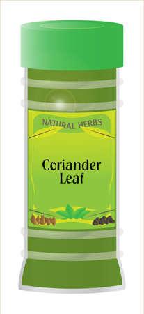 home grown: ceriander leaf