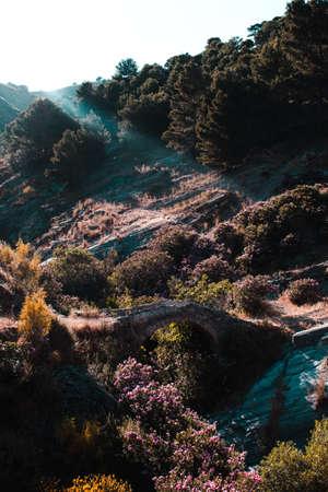 Ancient roan bridge in the mountain.