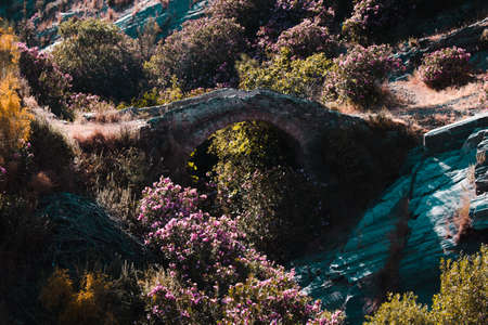 Ancient roan bridge in the mountain of Malaga.