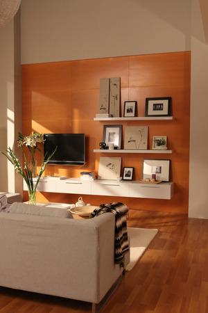 오렌지 컬러 벽과 소파와 현대 거실 디자인