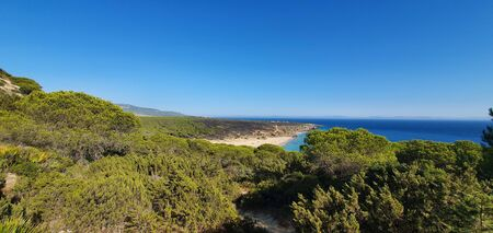 landscape of a mountain full of pine trees and a beach in the distance in southern Spain.
