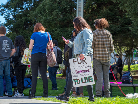 SAN FRANCISCO, CA - MARCH 25, 2018: Demonstrator holds a sign at an anti-fur rally in downtown San Francisco. Editöryel