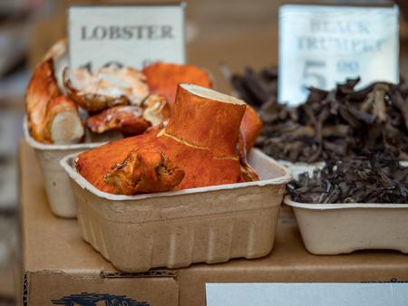 Lobster mushroom in marketplace Imagens