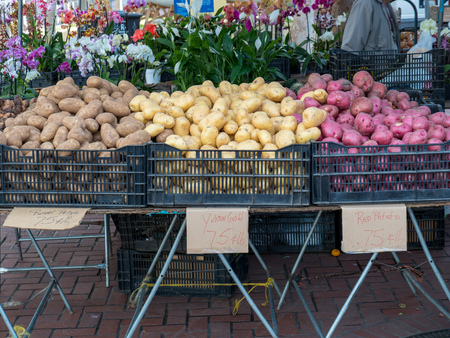 Yukon, russet, and red potatoes on sale at farmers market Stock Photo