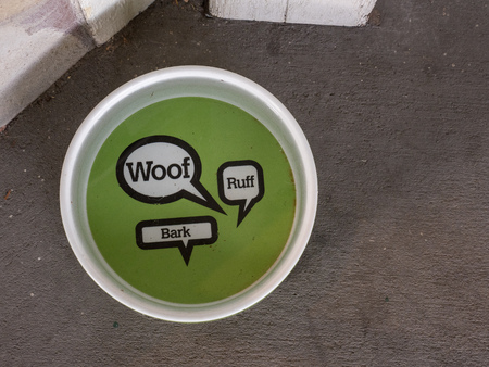 Water saucer for dogs. Woof design Stock Photo