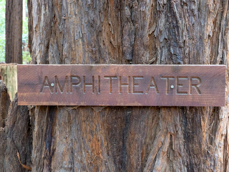 Close up of wooden amphitheater sign in woods
