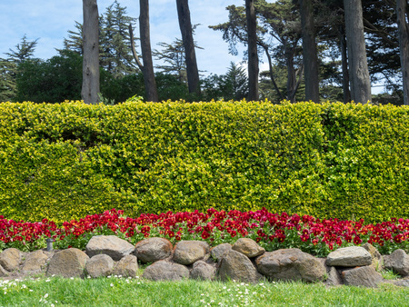 Decorative stone, flower, and bush wall outdoors outdoors in the sun