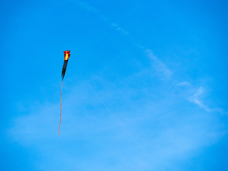 A cobra festively kite flying high on a sunny day