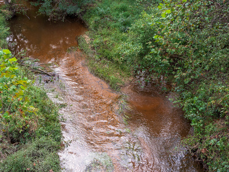 Overhead view of a shallow stream in the woods