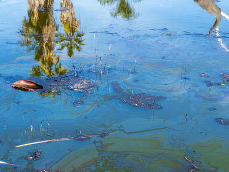 Tropical water with reflection of palm trees polluted with oil and debris