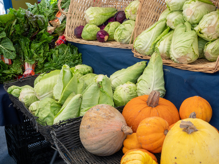 Lettuce, cabbage, pumpkins and other produce on display at outdoor farmers market at stand