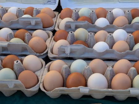 Brown and white eggs sitting in dozen count cartons sitting Imagens