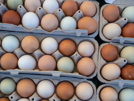 Overhead view of white and brown eggs sitting in a carton