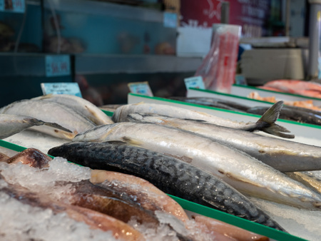 Various fish sitting on ice in grocery store seafood section for purchase