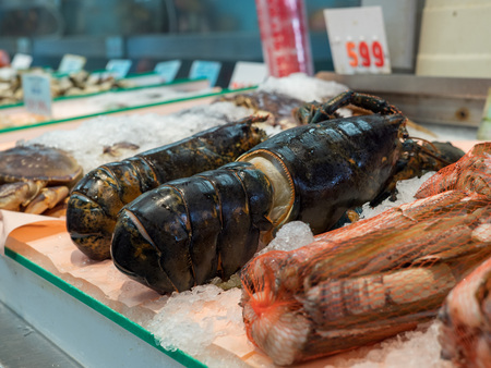 Raw, dead lobster sitting on ice in grocery store seafood section for purchase