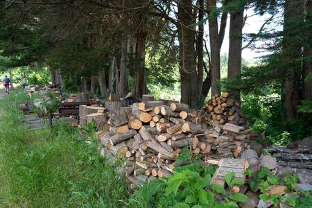 Piles of chopped wood and lumber at small sawmill on farm
