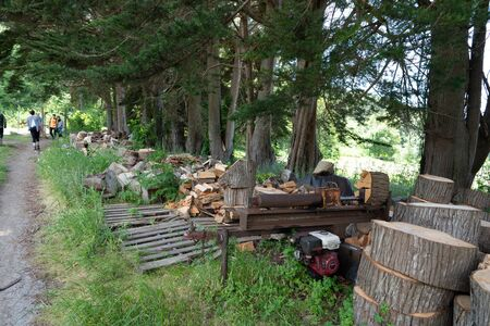 Small sawmill wood cutting machine sitting with piles of chopped logs