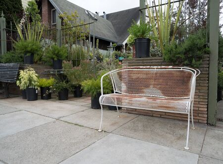 Rusted white bench sitting outside of store nursery plants outdoors