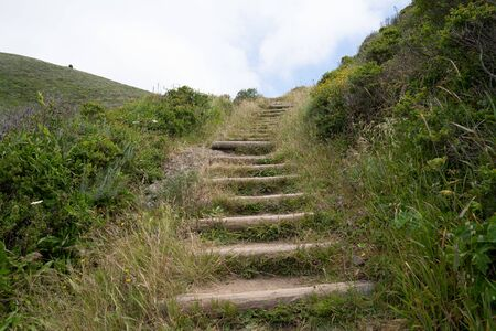 Wooden outdoor stairs on dirt hiking path overrun with nature leading up