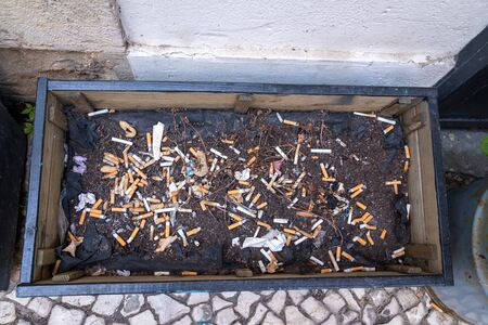 Empty plant pot filled with and soil and piles of cigarette butts