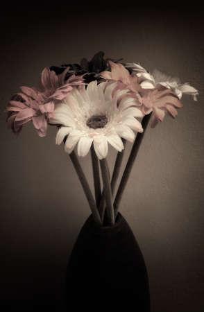 penumbra: Vase of Flowers