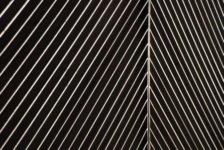 streaked: Texture streaked
